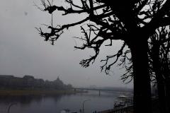 Dresden2 (2)