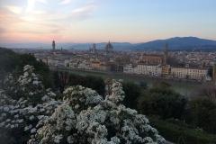 Firenze89