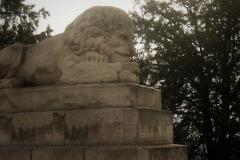beograd-lav