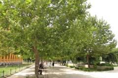 Mostar-36-Copy