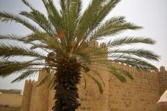 Tunis-Sousse-17