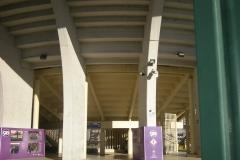 Stadio-Artemio-Franchi1
