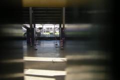 Stadio-Artemio-Franchi2