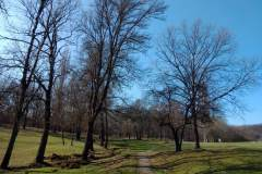 Sumarice-Kragujevac-15