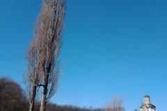 Sumarice-Kragujevac-16