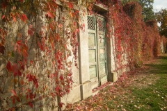 Timisoara, Romania19