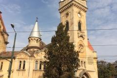 Timisoara, Romania41