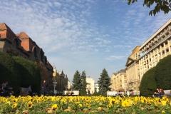 Timisoara, Romania6