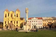 Timisoara, Romania73