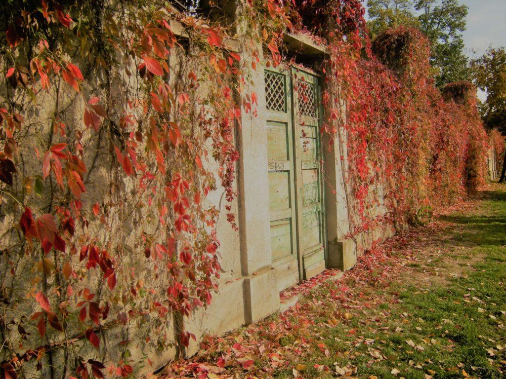 Jesen u Temisvaru