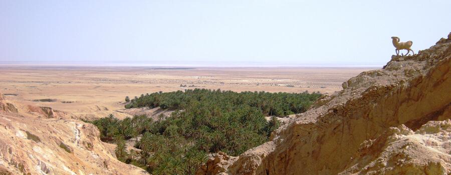 Sahara, Tunis