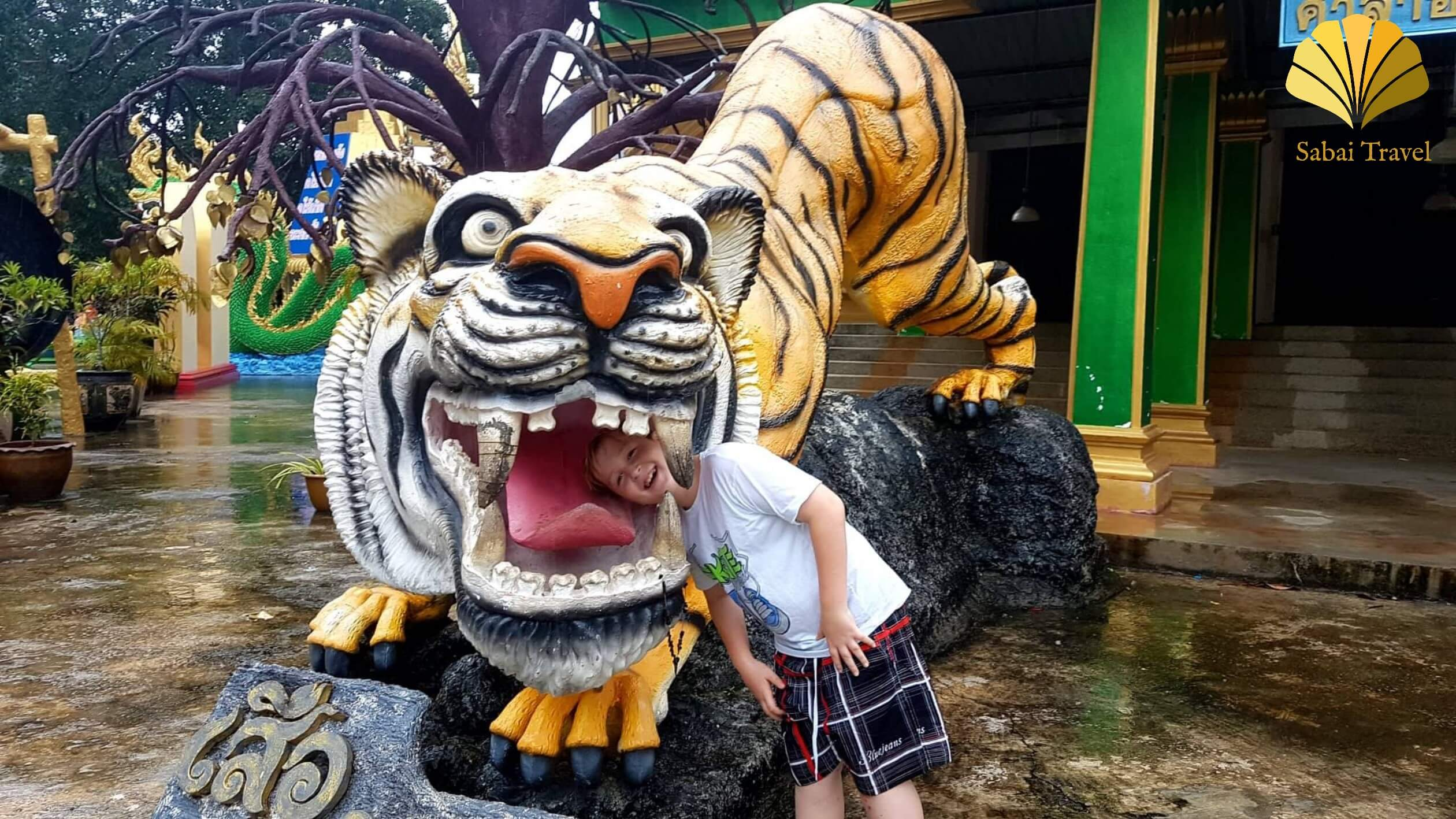 Thailand live – 2