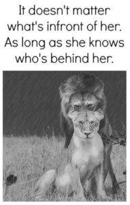 lav, lavica