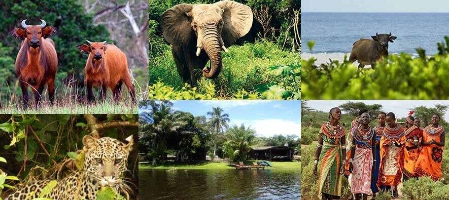Razglednica iz Gabona