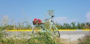 bicikl, ruke