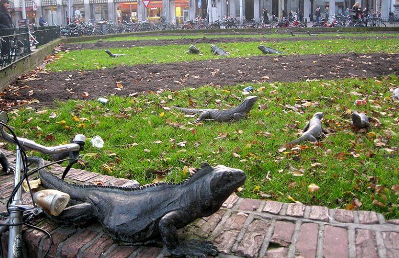 amazing park in amsterdam