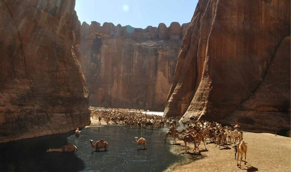 Oaza i stenovite formacije u pustinji