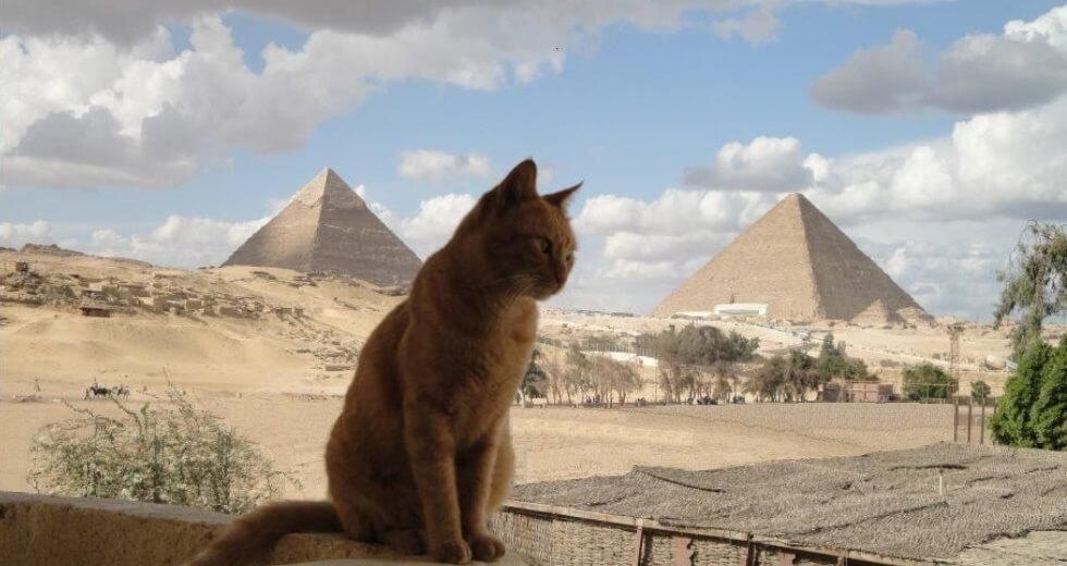 A-Z IDEMO NA PUT OKO SVETA – Država br. 52: Egipat (Egypt)
