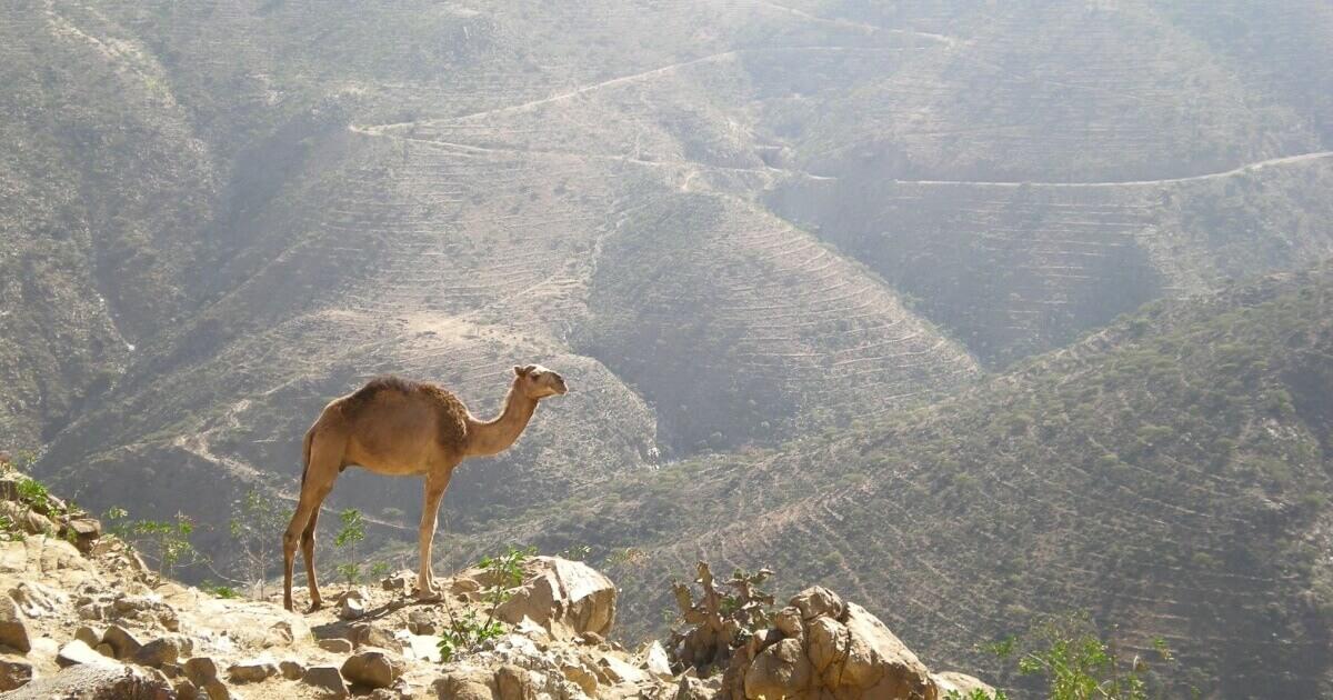 A-Z IDEMO NA PUT OKO SVETA – Država br. 55: Eritreja (Eritrea)